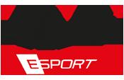 FAB Games eSports